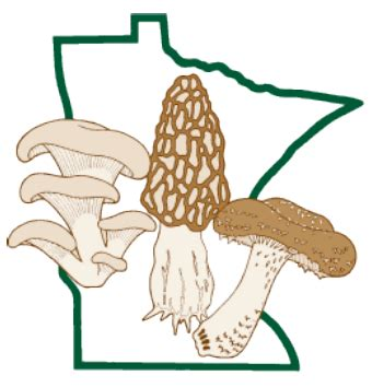 Research on oyster mushrooms
